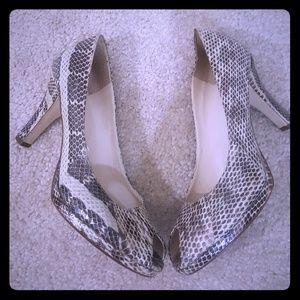 Snake Skin High Heel Shoes