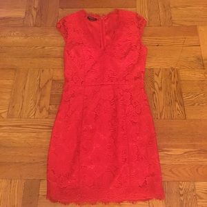 Red Lace Bebe Dress