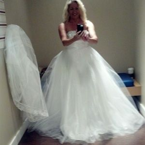 BNWOT Wedding gown with veil