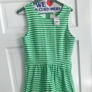 Jcrew dress. Never worn.