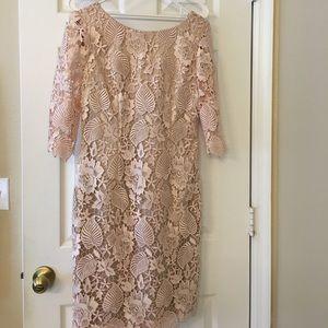 Blush lace overlay dress