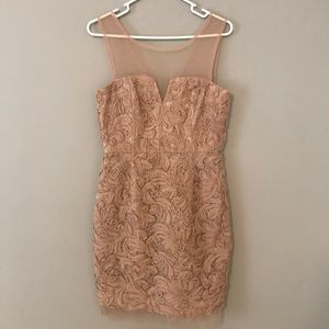 BCBGMAXAZRIA Champagne Dress with Mesh Size 10