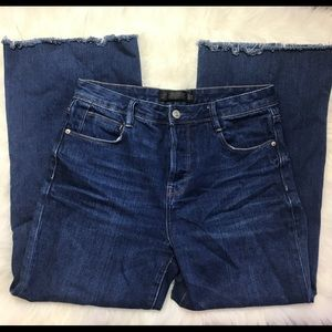Zara Distressed Wide Leg Jeans Sz 2