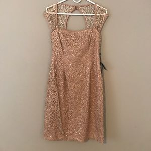 Adrianna Papell Dress Rosè Champagne Metallic Lace