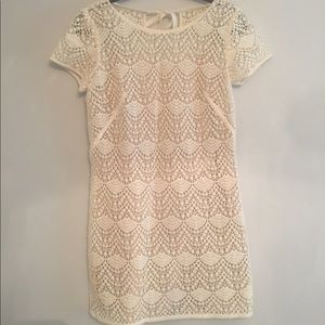 Ann Taylor Loft Cream Lace Dress