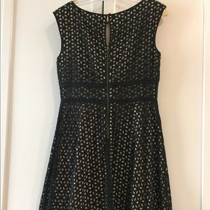 Ann Taylor LOFT sleeveless dress