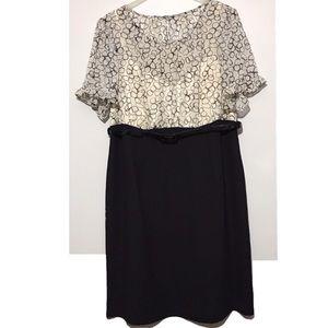 Dress Barn Plus Black/White Circle Belted Dress