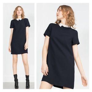 zara • navy dress with contrast peter pan collar