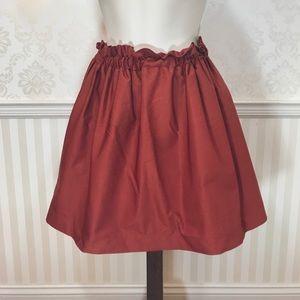 Zara Burnt Orange Skirt with Elastic Waist
