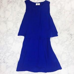 Dolce Vita DV Cobalt Blue Slinky Dress