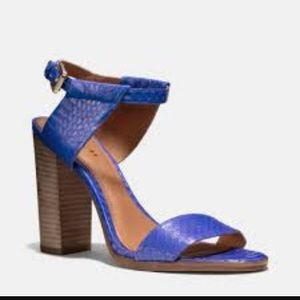 Coach Lexey blue/purple block heels