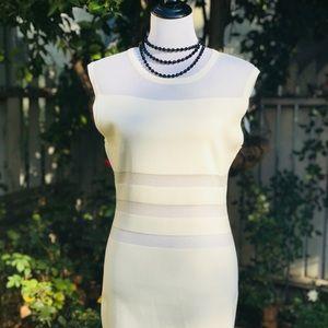 J.O.A Los Angeles Bodycon w/Sheer Paneling Dress
