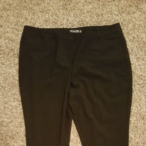 Brand new New York & Co. 7th Avenue dress pants
