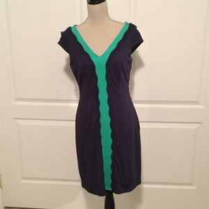 Fitted fully lined Lilly Pulitzer dress worn once