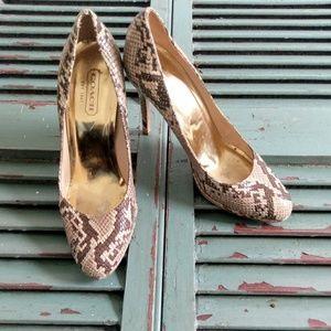 Coach Chelsey Python heels pumps