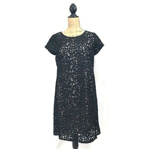 NWOT LOFT black lace shift dress