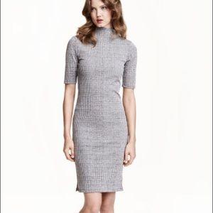 H&M Ribbed Turtleneck Dress