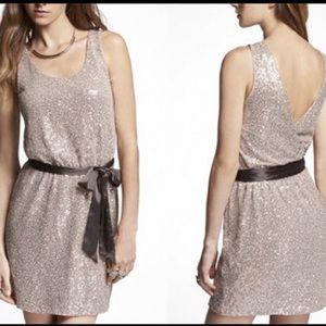 Express sequin sparkle dress