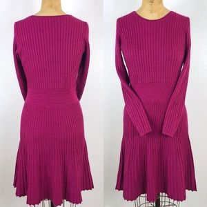 LOFT Berry Knit Pleated Slimming Sweater Dress