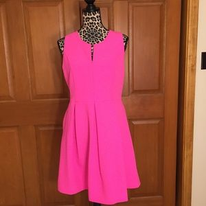 NWT Gianni Bini Pink Dress Large
