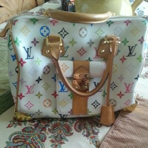 Louis Vuitton Multicolor Speedy bag