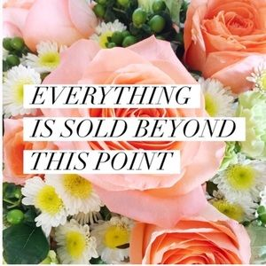 Other - 🌼 EVERYTHING BEYOND THIS POINT IS SOLD 🌸
