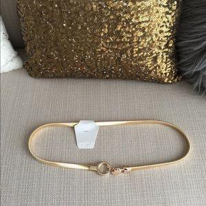 Accessories - Metallic Elastic Waist Belt in Gold