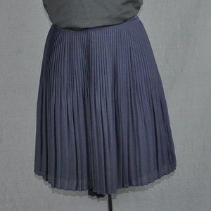 Ann Taylor Navy Blue Pleated Skirt Sz: 0