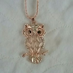 Jewelry - Gorgeous Rose gold toned owl necklace with accents