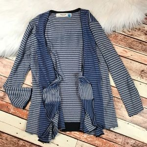 Anthropologie sparrow blue stripe cardigan