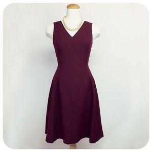 {{ Banana Republic }} Raspberry Fit & Flare Dress