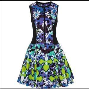 Peter Pilotto for target dress.
