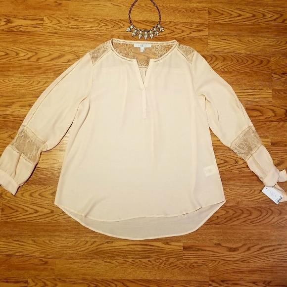 edf81aa9e1f37 Fever Pale Pink Semi Sheer Long Sleeved Top