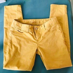 American Rag Mustard colored jeans