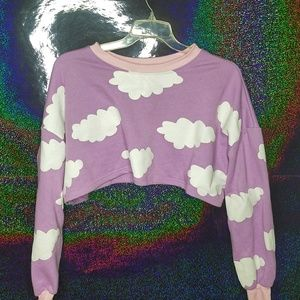 Sweaters - Purple Pink Cropped Pullover