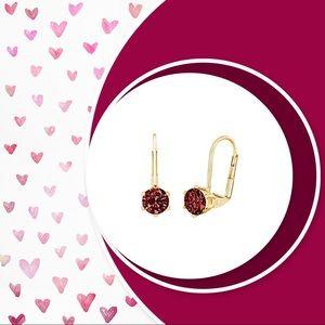 Jewelry - ❤️ Garnet leverback earrings