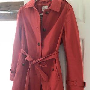 Beautiful dress/fall coat