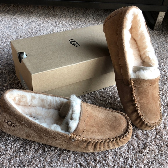 New, unworn w/ box Women's UGG Scalloped Moccasins