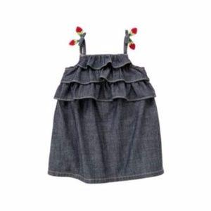GYMBOREE Girl's Burst of Spring Chambray Dress 2T