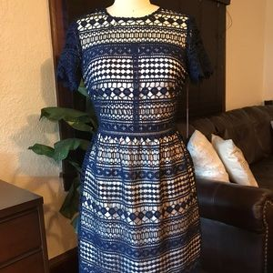 Vince Camuto Navy Lace Dress Sz. 6 BRAND NEW
