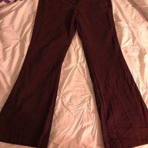 Maroon color dress pants