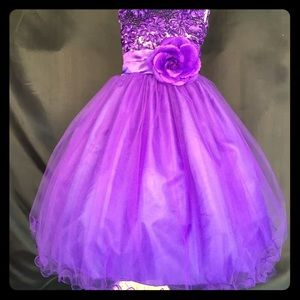Other - Purple formal pageant dress