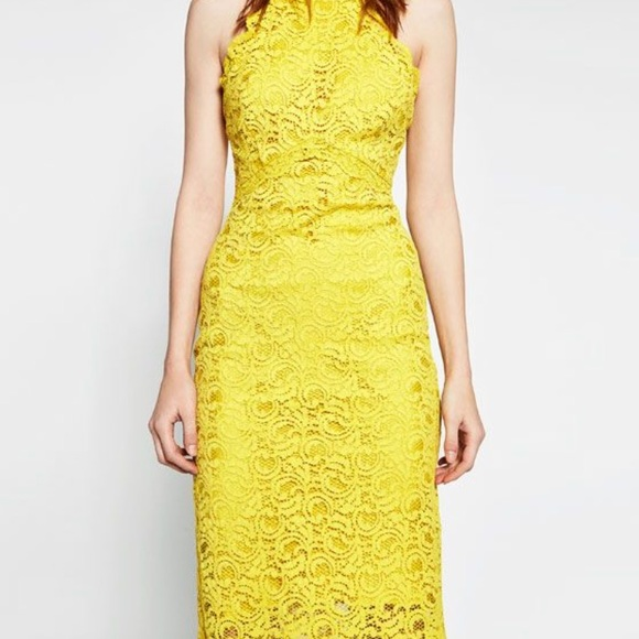 Nwt Zara Mustard Yellow Lace Shift Dress Sz S Nwt