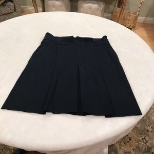 Zara Navy blue A Line Skirt with pockets
