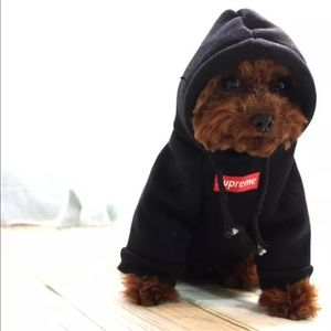 Supreme Dog Hoodies!!!