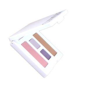 Clinique Eye & Cheek Colour Compact