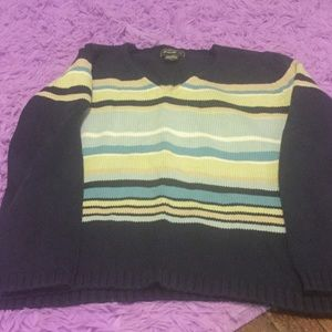 Women's navy with stripes sweater