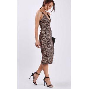 Topshop Leopard Print Body-Con Midi Dress