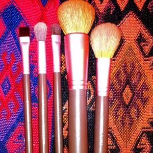 Bare Escentuals Ltd Ed Buffing Brush Collection