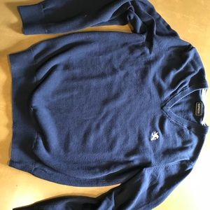 Men's vneck Express small Navy blue sweater